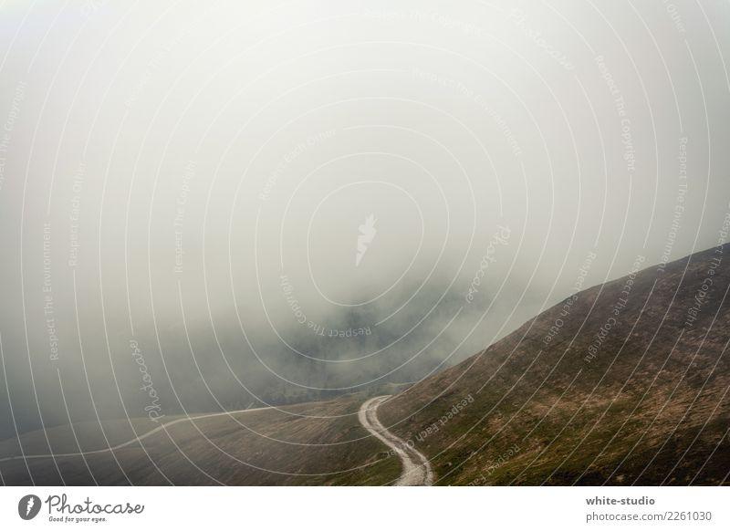 Road to nowhere! Einsamkeit Berge u. Gebirge Straße Angst wandern Nebel bedrohlich Hügel Kurve Autofahren Nebelschleier Nebelbank Nebelstimmung