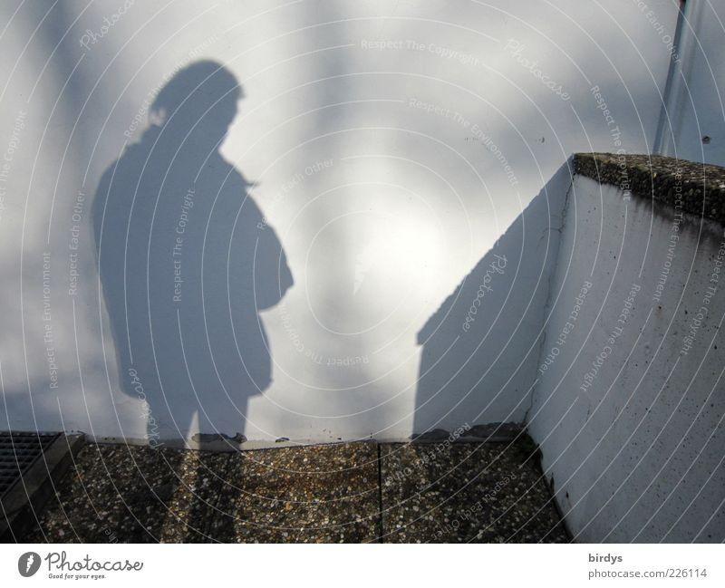 Schattenmann maskulin Junger Mann Jugendliche Erwachsene 1 Mensch warten Mauer Silhouette Sonnenlicht Wand Kontrast Licht Farbfoto Gedeckte Farben Außenaufnahme
