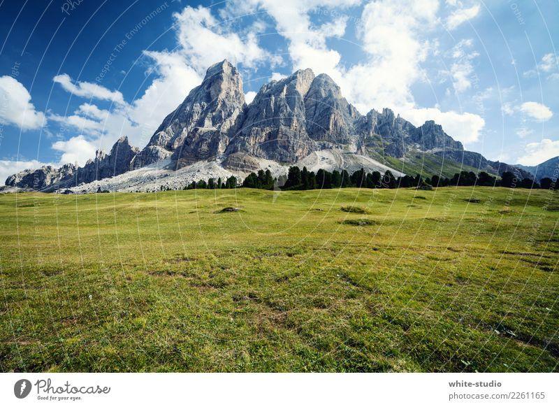 Berg! Felsen Alpen Berge u. Gebirge Gipfel wandern Bergsteigen Berghang Klettern Bergkamm Bergkette Bergkuppe Wiese Peitlerkofel Südtirol Dolomiten Steinwand