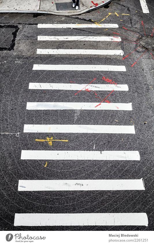 Fußgängerübergang in New York City von oben. Stadt Straße Verkehrszeichen Klischee schwarz weiß Mut Sicherheit Schutz gehorsam Sorge Stress Partnerschaft