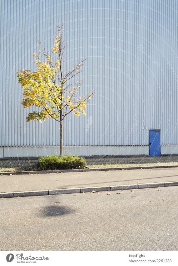 tür Baum Stadt Industrieanlage Fabrik Bauwerk Gebäude Architektur Mauer Wand Fassade Tür Straße Frühlingsgefühle Optimismus Kraft geduldig ruhig Einsamkeit