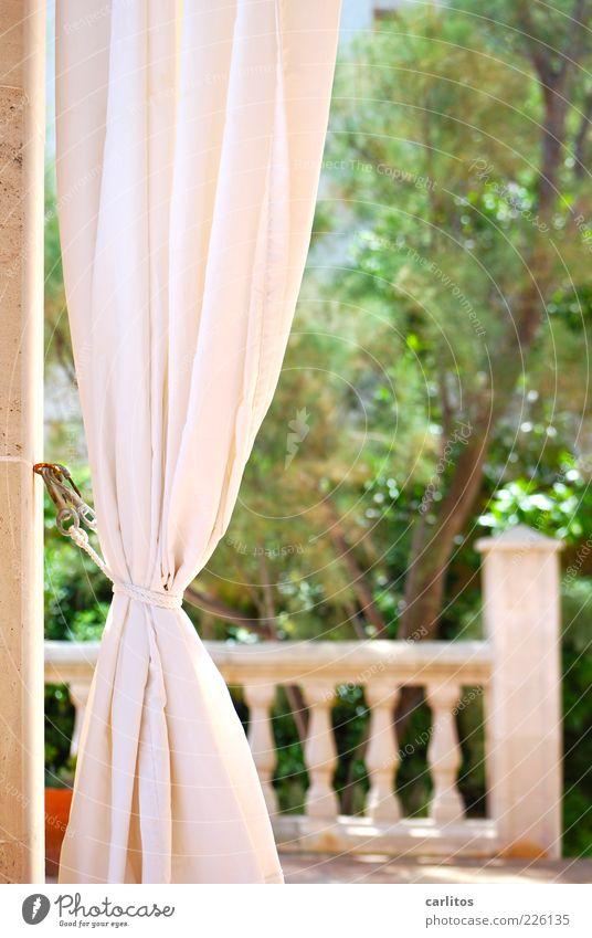 good day sunshine grün Ferien & Urlaub & Reisen Erholung Garten Frühling ästhetisch Geländer Vorhang Schönes Wetter Terrasse Mallorca mediterran Sandstein