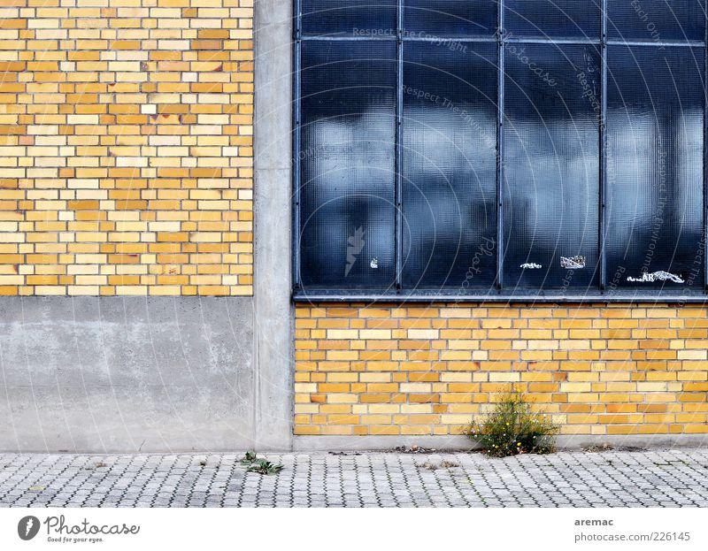 Schlechte Zeiten Menschenleer Haus Industrieanlage Fabrik Bauwerk Gebäude Architektur Mauer Wand Fassade Fenster alt blau gelb Vergangenheit Vergänglichkeit