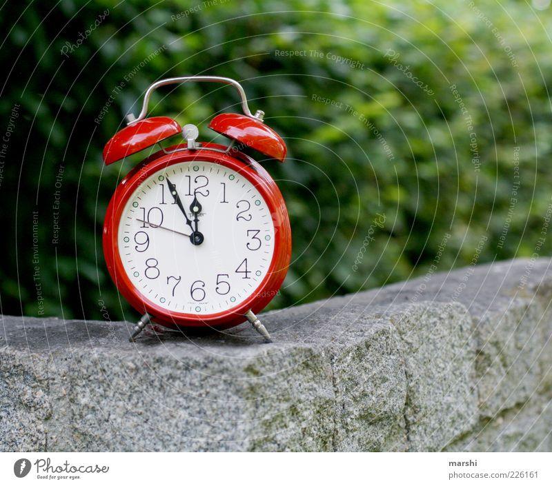 5 vor 12 Natur Stein grün rot Wecker 5vor12 Zifferblatt retro Uhr Uhrenzeiger Symbole & Metaphern Mauer Zeitpunkt Zeitplanung Außenaufnahme ticktack Steinmauer