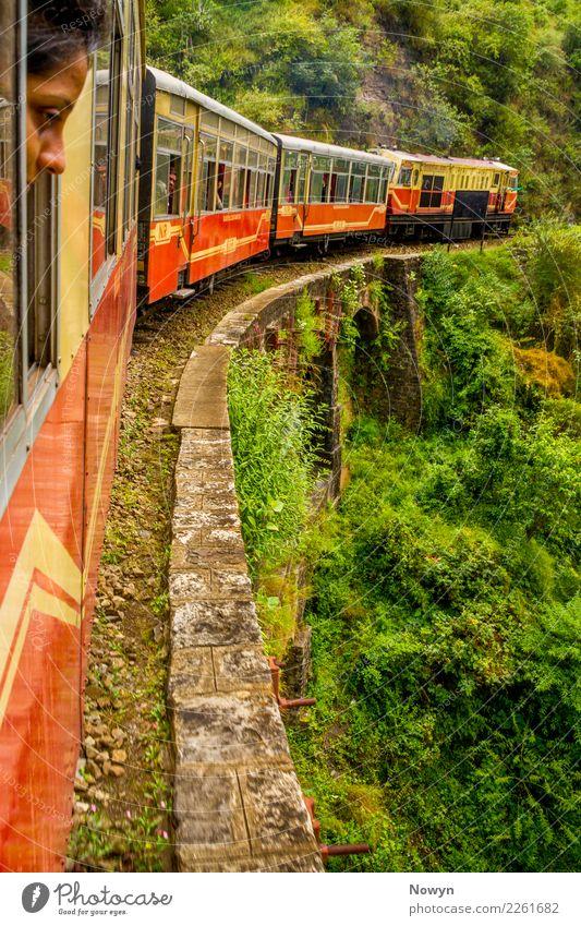 Train Ride in the Himalayas Zufriedenheit Ferien & Urlaub & Reisen Tourismus Ausflug Abenteuer Ferne Freiheit Sightseeing Umwelt Natur Landschaft Pflanze