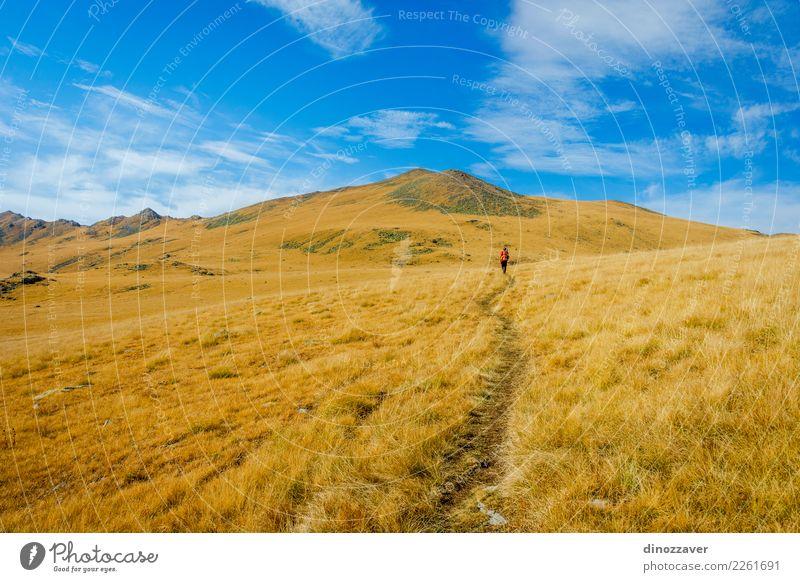 Weg durch goldene Herbstberge, Lagodekhi Natur Ferien & Urlaub & Reisen blau Sommer schön Landschaft Sonne Wolken Berge u. Gebirge Umwelt Wiese Wege & Pfade