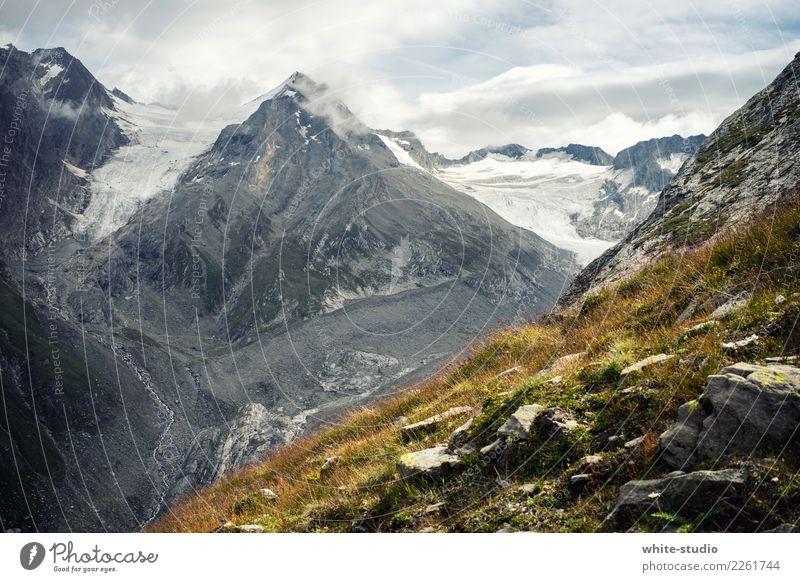 Eiszeit harmonisch Sommerurlaub Berge u. Gebirge wandern Umwelt Natur Landschaft Pflanze Urelemente Felsen Alpen Gipfel Schneebedeckte Gipfel Gletscher