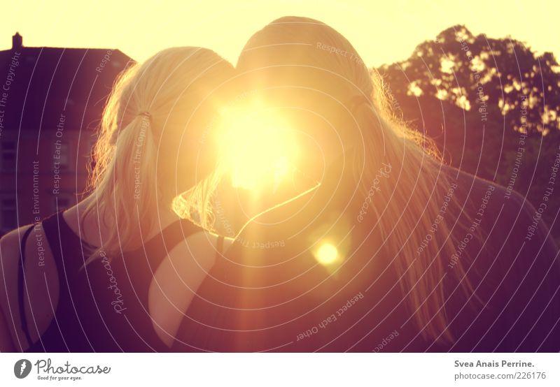 sommerliebe. Mensch Jugendliche schön Erwachsene Liebe feminin Kopf Haare & Frisuren träumen hell Freundschaft Zufriedenheit blond Zusammensein maskulin