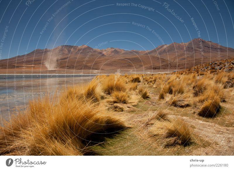 Lagune und Windrose Natur Einsamkeit Ferne gelb Freiheit Berge u. Gebirge Umwelt Landschaft Gras See Wetter Sträucher Wüste Unendlichkeit Gipfel