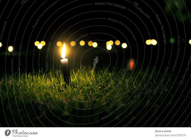 Light A Candle grün Sommer ruhig gelb dunkel Wiese Gras Lampe Feste & Feiern Brand Kerze brennen Veranstaltung Flamme Halm Kerzenschein