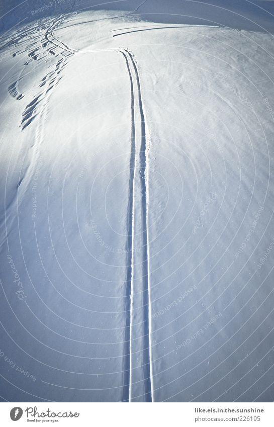 first line, baby! Ferien & Urlaub & Reisen Einsamkeit Landschaft ruhig Ferne Winter Berge u. Gebirge Schnee Sport Freiheit genießen Lebensfreude Streifen Unendlichkeit Skifahren entdecken