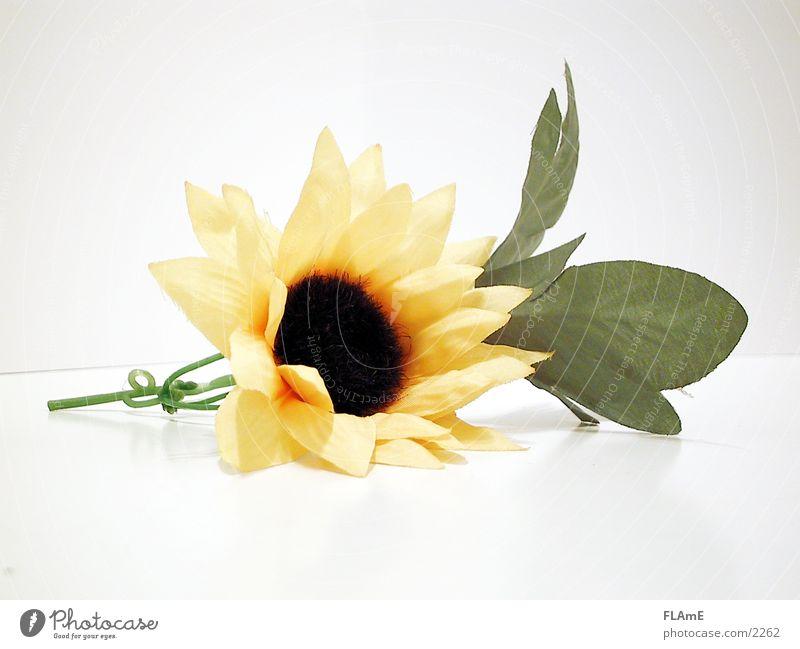 Sonnenblume Natur schön grün Pflanze gelb Stil Blüte retro liegen Dekoration & Verzierung Kunststoff trocken Textilien Blütenblatt künstlich