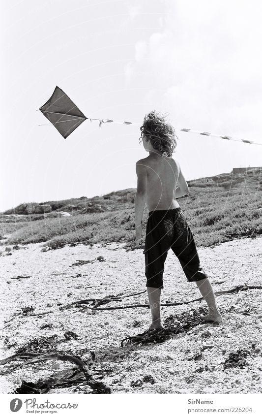 139 [Kinderträume II] Kind Ferien & Urlaub & Reisen Sommer Freude Strand Spielen Junge Freiheit fliegen Kindheit Wind authentisch stehen frei beobachten Lebensfreude