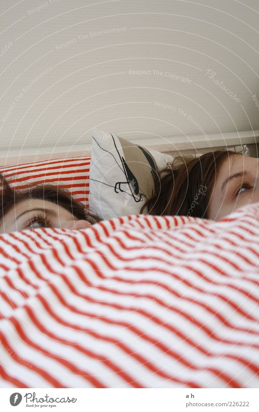 bettgeflüster Mensch Jugendliche weiß rot ruhig Auge Erholung Wand Erwachsene Freundschaft Zusammensein Raum liegen Perspektive Pause