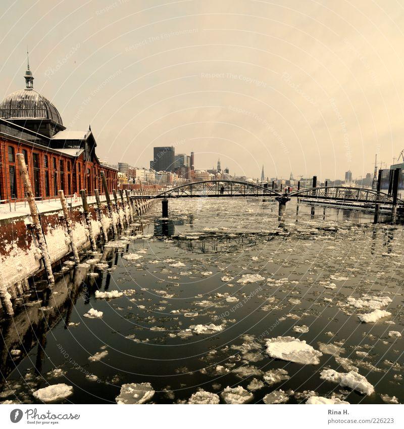 Hamburger Hafen im Winter Fluss Brücke Gebäude Sehenswürdigkeit Schifffahrt Binnenschifffahrt frieren kalt Altonaer Fischauktionshalle Eisscholle Fischmarkt