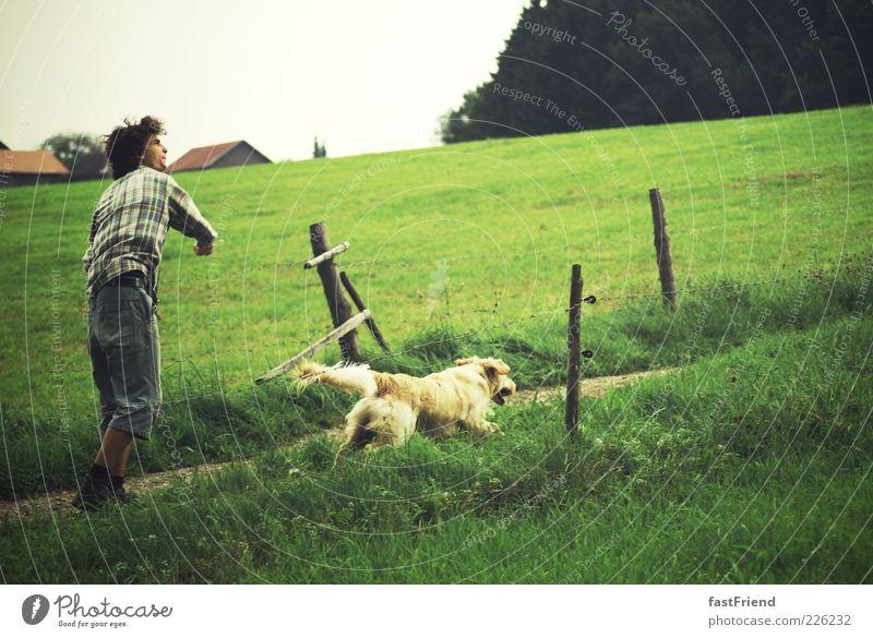 freier Lebensstil Mensch Jugendliche Hund Sommer Freude Tier Erwachsene Wiese Landschaft Spielen Freiheit Wege & Pfade springen laufen maskulin Laufsport