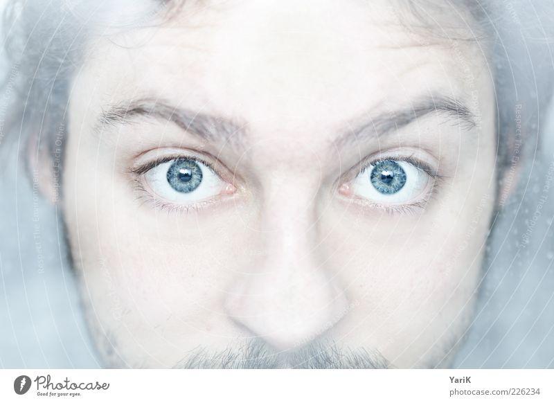 cold as eyes Mensch Mann Jugendliche blau Gesicht Auge kalt Erwachsene Nase maskulin Coolness Neugier beobachten entdecken gefroren Bart
