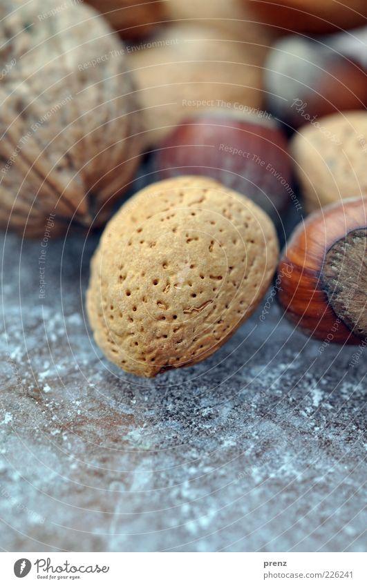 nussmix Lebensmittel Pflanze rund braun Mandel Nuss Vegetarische Ernährung Steinfrüchte Eis Walnuss Haselnuss Farbfoto Außenaufnahme Nahaufnahme Makroaufnahme