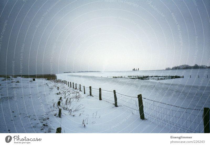 Spaziergang Himmel Winter Ferne Schnee Freiheit Landschaft Glück Eis Frost Zaun Weide Lebensfreude Ostsee Zaunpfahl Maschendrahtzaun graue Wolken
