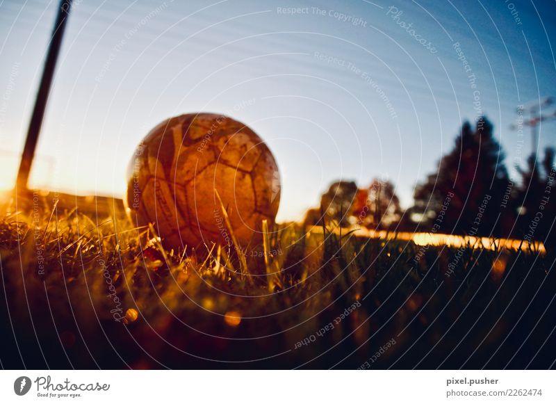Fussball Ferien & Urlaub & Reisen blau grün rot Freude gelb Sport Bewegung Gras orange Freizeit & Hobby gold Schönes Wetter Fitness Fußball