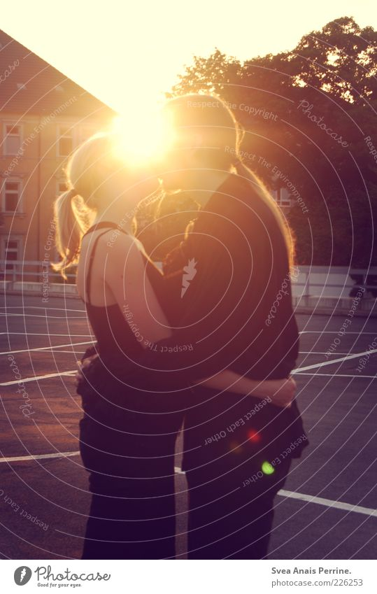 sommerliebe 2. Mensch Jugendliche schön Baum Sonne Sommer Haus Erwachsene Liebe feminin Gefühle Haare & Frisuren Glück träumen Stimmung Zusammensein