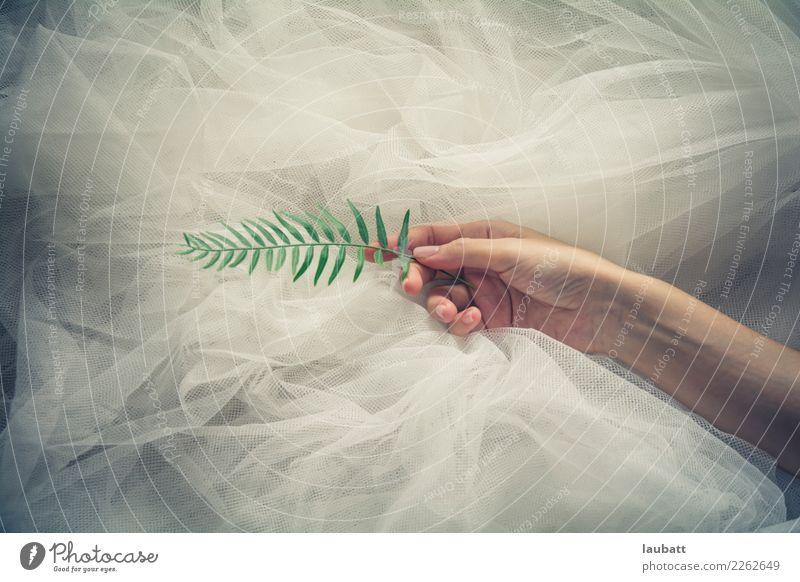 Grüne Seele Reichtum Stil Design Maniküre Gesundheitswesen Wellness Wohlgefühl Zufriedenheit Sinnesorgane Erholung ruhig Frau Erwachsene Hand Natur Pflanze Erde