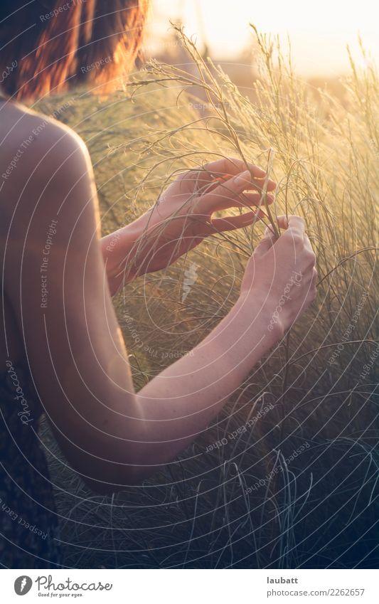 Frau Natur Pflanze Sommer Gesunde Ernährung Hand Erholung ruhig Freude Erwachsene Leben Umwelt Gesundheit Gesundheitswesen Gras Zufriedenheit