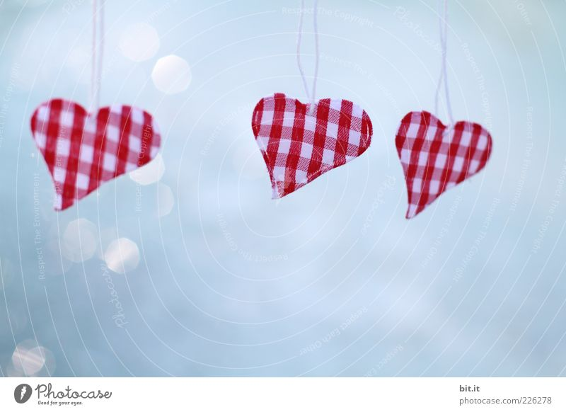 Love is in the Air... blau rot Liebe Glück Herz Romantik Kitsch Zeichen Symbole & Metaphern hängen kariert Lichtpunkt Krimskrams baumeln herzförmig freihängend