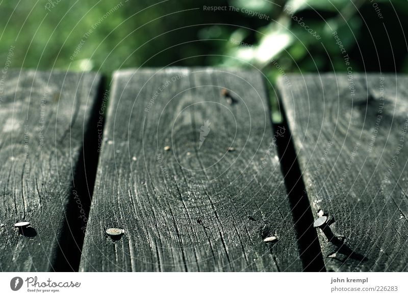 living on the edge Natur alt grün Holz grau Boden Holzbrett Nagel Maserung Jahresringe