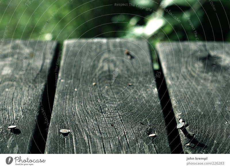 living on the edge Natur Holz alt grau grün Holzbrett Boden Nagel Maserung Jahresringe Schwache Tiefenschärfe Menschenleer Nahaufnahme Detailaufnahme