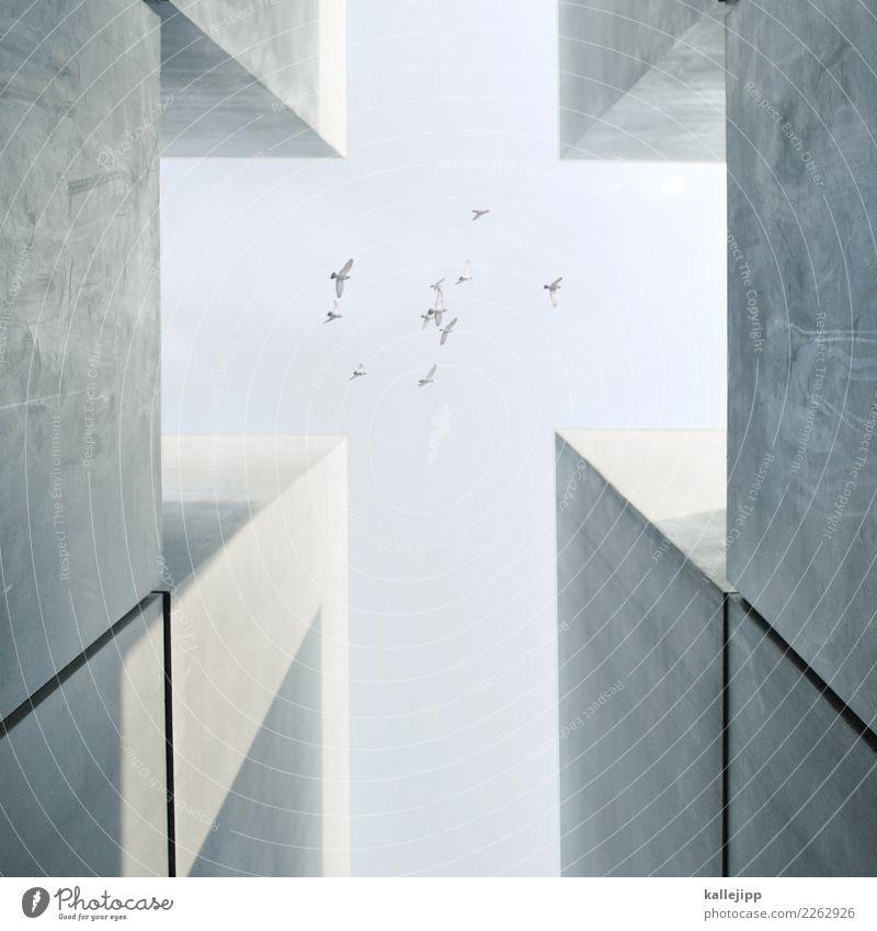 auferstehung Himmel (Jenseits) Religion & Glaube Tod Feste & Feiern fliegen Kirche Beton Hilfsbereitschaft Hoffnung Ostern Trauer Symbole & Metaphern Frieden
