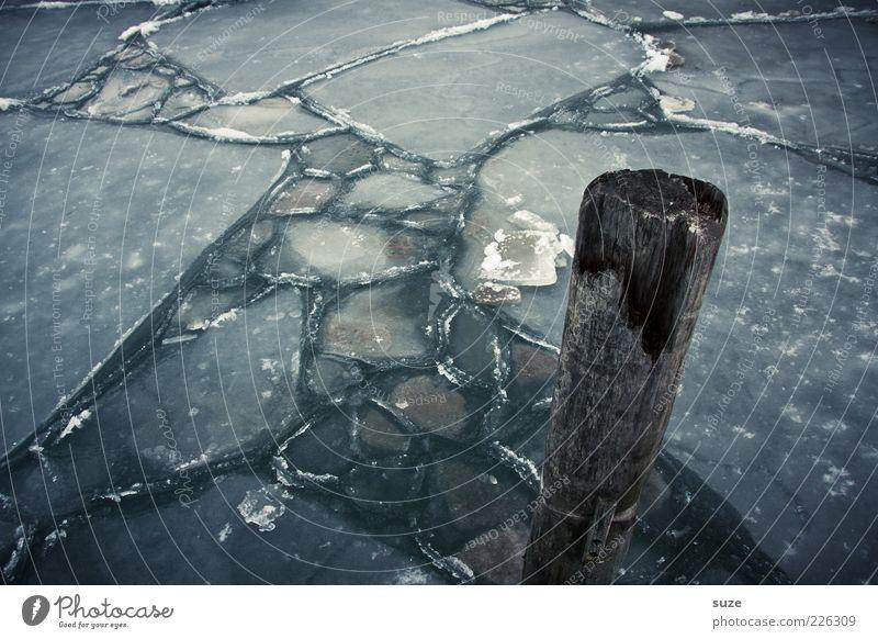 Stumpf Wasser Eis Frost Ostsee Meer Holz dunkel kalt Einsamkeit Eisfläche Eisschicht Pfosten Holzpfahl Anlegestelle gefroren Winter Farbfoto Gedeckte Farben