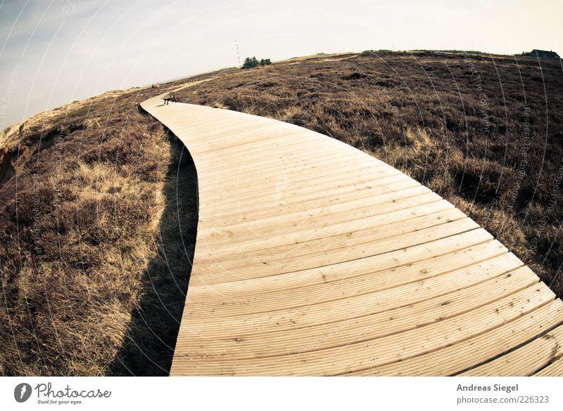 Dieser Weg Ausflug Ferne Freiheit Sommer Natur Landschaft Himmel Horizont Schönes Wetter Küste Nordsee Heide Morsum Kliff Wege & Pfade Holz frei natürlich