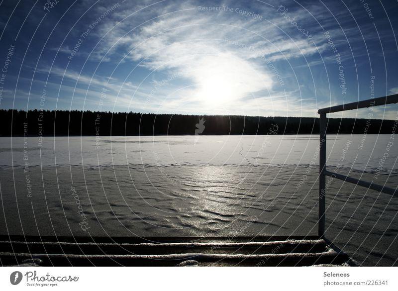 zugefroren Ferne Freiheit Winter Umwelt Natur Landschaft Himmel Wolken Klima Wetter Eis Frost Schnee Wald Küste Seeufer Flussufer frieren glänzend hell kalt