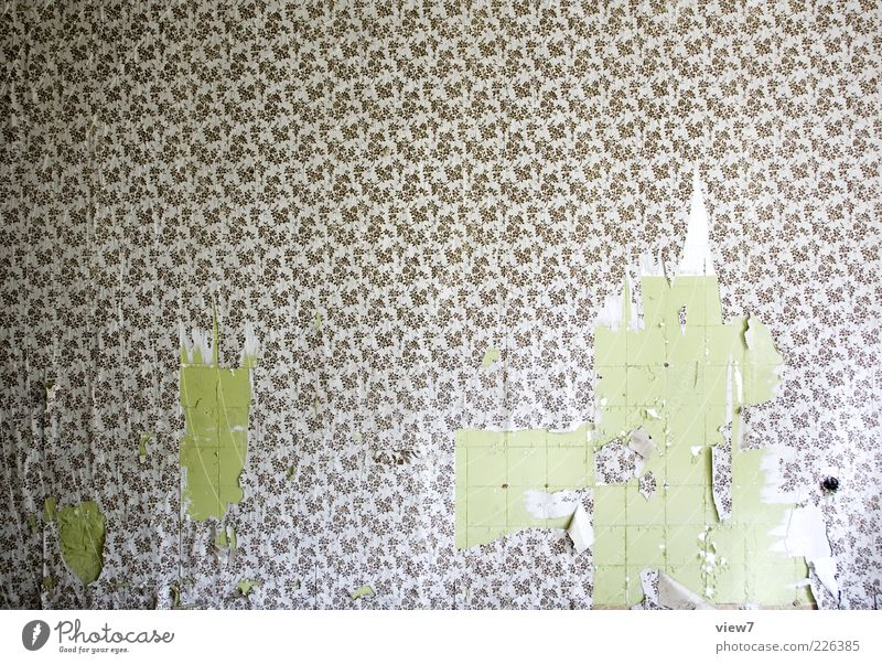Tapete drüber! alt Raum Zeit Design modern ästhetisch Innenarchitektur kaputt authentisch Häusliches Leben einzigartig Dekoration & Verzierung Vergänglichkeit