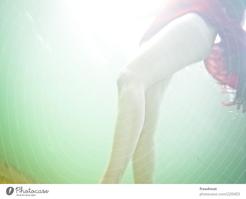 tauchgang Frau Mensch Jugendliche Wasser Sonne Sommer Ferien & Urlaub & Reisen Erholung feminin Erwachsene Beine elegant Schwimmen & Baden Sonnenbad Leichtigkeit Im Wasser treiben