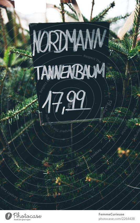 Handwritten price tag for 'Nordmann Tannenbaum' Natur kaufen Preisschild Weihnachtsbaum Weihnachten & Advent Blumenladen Kreide Tafel Preistafel Winter Farbfoto