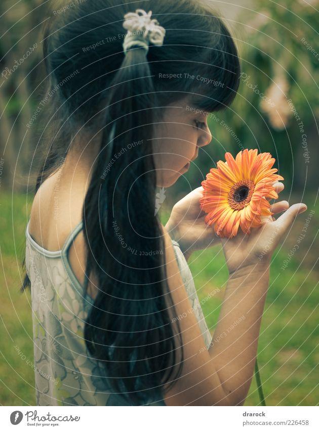 schöne kind, schöne blume Mensch Natur grün Pflanze Blume Freude gelb Gefühle Garten Blüte orange Kindheit niedlich Kleid festhalten