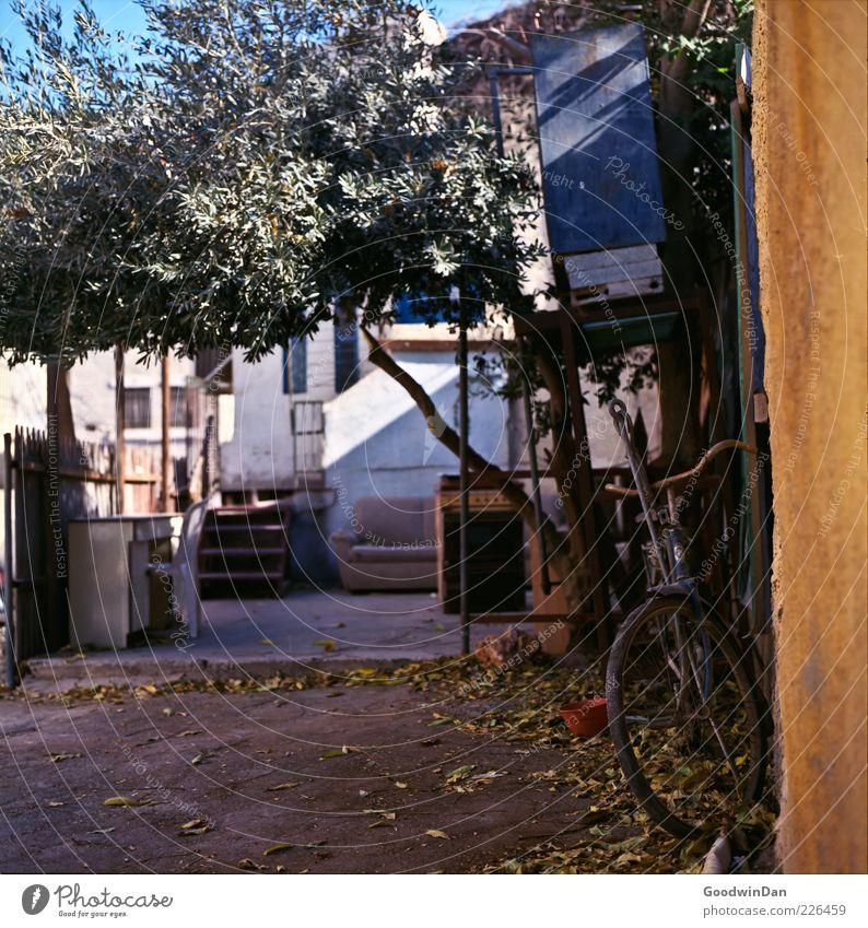 um die Ecke alt Blatt Haus Wand Mauer Fassade dreckig Treppe Armut authentisch viele Stuhl Zaun Terrasse Blumentopf Altstadt
