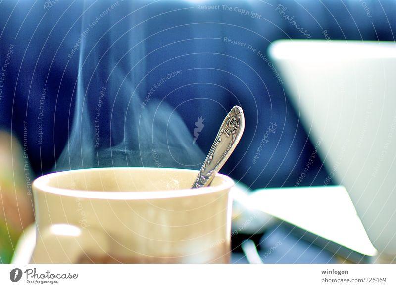 blau Lifestyle Wohnung Design Freizeit & Hobby Raum Häusliches Leben Ernährung Getränk Jugendkultur trinken Kaffee Rauch Sofa Tee Tasse