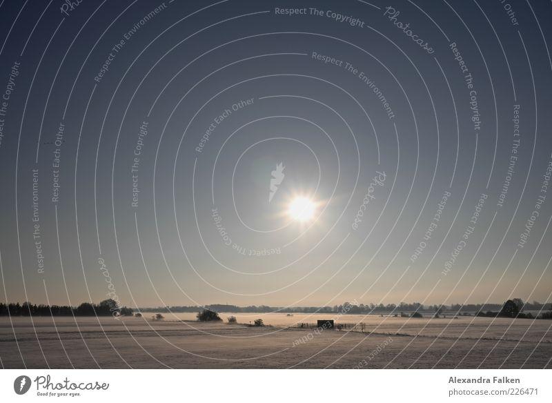Flachland. Freiheit Winter Schnee Umwelt Natur Himmel Wolkenloser Himmel Klima Wetter Schönes Wetter Eis Frost Wiese Niedersachsen kalt Klarheit leuchten