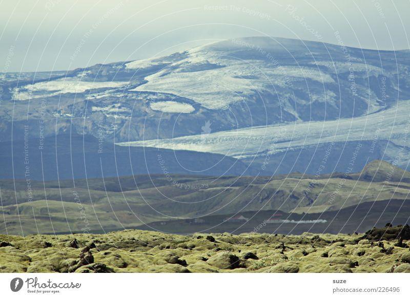 Islandstreifen Ferien & Urlaub & Reisen Ferne Schnee Berge u. Gebirge Umwelt Natur Landschaft Urelemente Erde Himmel Wolkenloser Himmel Klima Wetter Moos Hügel