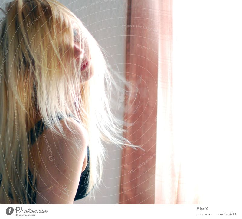 Ces Mensch Jugendliche schön Erwachsene feminin Haare & Frisuren blond 18-30 Jahre Junge Frau Schulter langhaarig verdeckt Haarsträhne Frau frivol