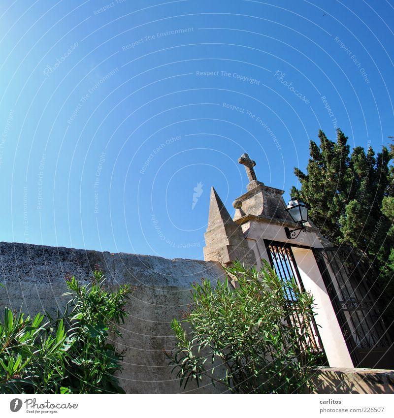 cementerio alt grün blau Sommer Himmel (Jenseits) Wand Mauer Traurigkeit Tür offen Perspektive Sträucher Spitze Christliches Kreuz Tor Kreuz