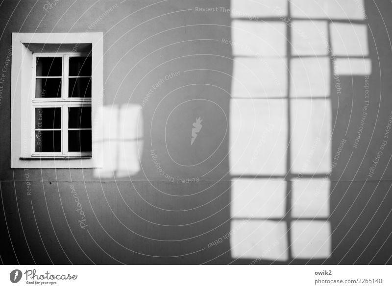 Reflex Bautzen Lausitz Deutschland Stadtzentrum Mauer Wand Fassade Fenster leuchten eckig einfach Erfolg hell trist grau Vergänglichkeit Schwarzweißfoto