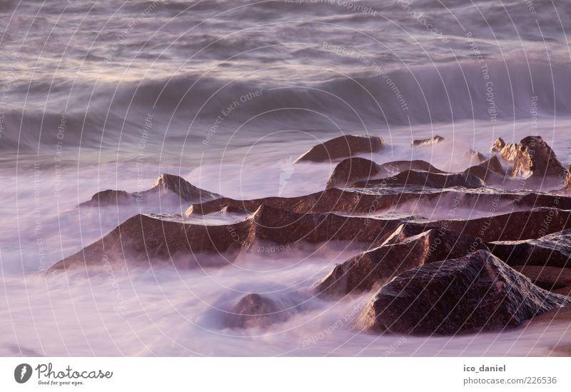 Steine - Ozean - Wasser Glück Wohlgefühl Zufriedenheit Freiheit Strand Meer Wellen Ruhestand Feierabend Umwelt Natur Landschaft Urelemente Klima Schönes Wetter