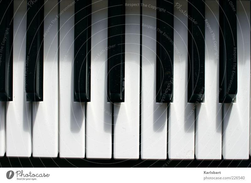 chopin. verstaubt. weiß Freude schwarz Gefühle Bewegung Musik Linie Lifestyle Klaviatur Klavier Musikinstrument Staub Keyboard Kultur Orgel aufgereiht