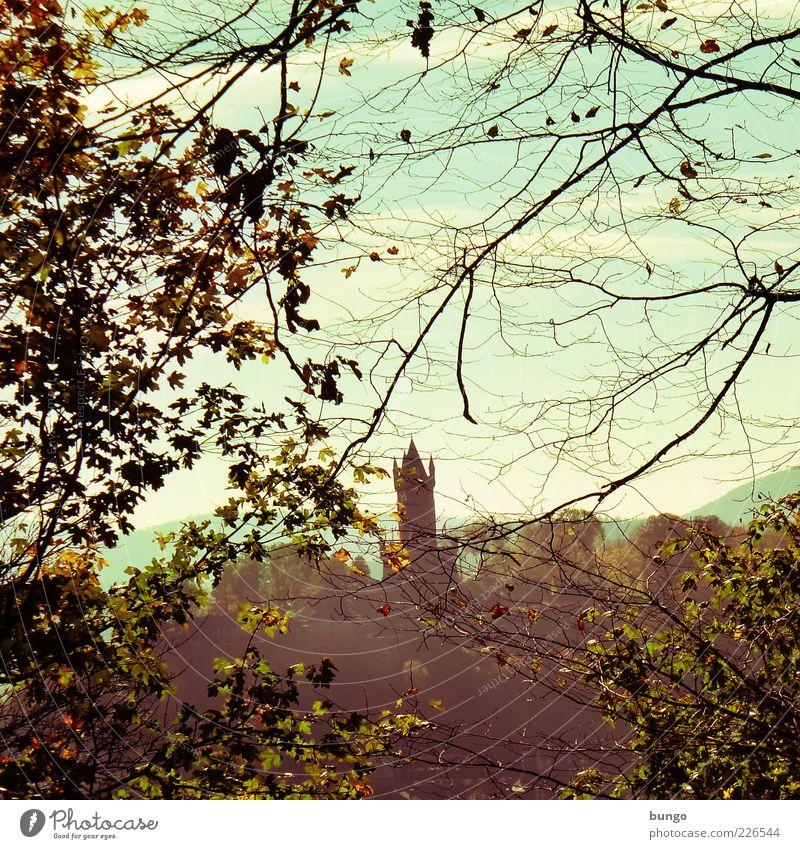 Zwei Jahreszeiten Himmel Natur Baum Wolken Blatt Wald Herbst Umwelt ästhetisch Sträucher Turm Ast Bauwerk Burg oder Schloss Aussicht Wahrzeichen