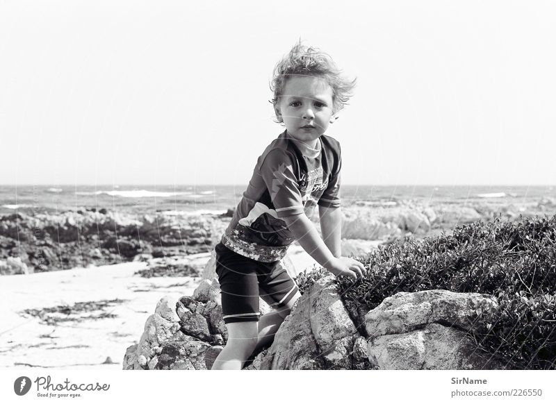 146 [Der Entdecker] Spielen Kinderspiel Sommerurlaub Strand Meer Junge Kindheit Leben Mensch 3-8 Jahre Wolkenloser Himmel Küste entdecken frei schön natürlich