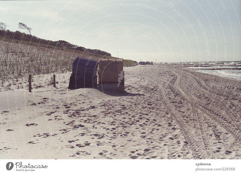 Für Zwei Himmel Natur Ferien & Urlaub & Reisen Strand Meer ruhig Einsamkeit Ferne Erholung Freiheit Umwelt Landschaft Wege & Pfade Zufriedenheit Ausflug